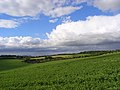 Farmland, Brightwalton - geograph.org.uk - 891621.jpg