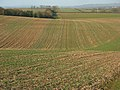 Farmland, Watlington - geograph.org.uk - 1123746.jpg