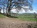 Farmland near Cae Whildin - geograph.org.uk - 787930.jpg