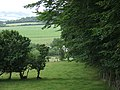 Farmland near Penuwch, Ceredigion - geograph.org.uk - 898704.jpg