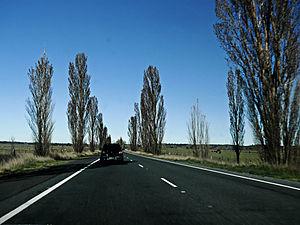 Federal Highway (Australia) - Image: Federal Highway, Wollogorang