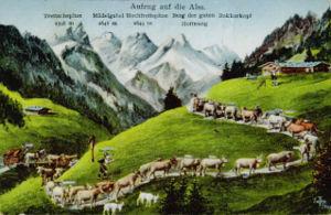 Allgäu Alps - Ascent to the Alm (Aufzug auf die Alm) (postcard by Eugen Felle). Behind: the central main chain of the Allgäu Alps