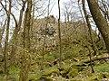 Felsformation an der Milseburg - panoramio.jpg