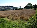 Field by Headway Cross - geograph.org.uk - 938405.jpg