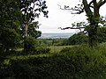 Fields and Trees - geograph.org.uk - 1409259.jpg