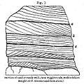 Fig3-Lyell.jpg