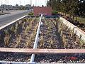Filtre planté (constructed wetland) au ville de Attouia, Maroc (Morocco) (11055516925).jpg