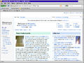 Firefox 3.5.4 on OS2 Warp4.png