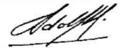 Firma Adolfo Diz.png
