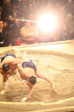Glare (vision) - Glare from a camera flash during a Sumo fight
