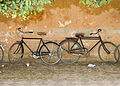 Flickr - DavidDennisPhotos.com - Bikes in Luxor.jpg