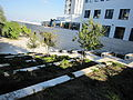 Flickr - Technion - Israel Istitute of Technology - IMG 1109.jpg