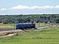 Flickr - nmorao - Biodiesel, Alcácer, 2008.09.01.jpg