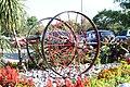 Flowers in Oshawa IMG 2109 (41814909860).jpg