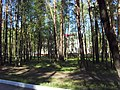 Fokinskiy rayon, Bryansk, Bryanskaya oblast', Russia - panoramio (106).jpg
