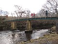 Footbridge over the River Tees - geograph.org.uk - 1709566.jpg