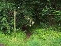 Footpath Near Combe Florey - geograph.org.uk - 1437141.jpg