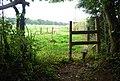 Footpath and stile - geograph.org.uk - 940146.jpg