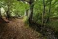 Footpath below Brook Farm, Longtown - geograph.org.uk - 572687.jpg
