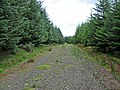 Forestry track near Corrieour Farm - geograph.org.uk - 909626.jpg