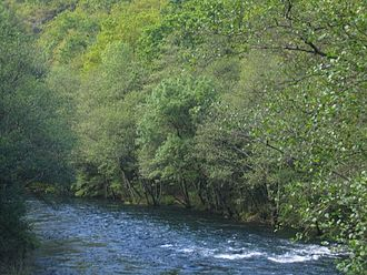 Rivers of Galicia - The Eume flows through woodland