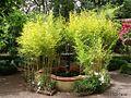 Fuente entre cañas de bambú - panoramio.jpg