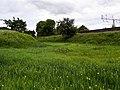 GOC Berkhamsted & Frithsden 146 Berkhamsted Castle (28706860186).jpg