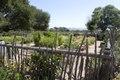 Garden at La Purisima Mission, Lompoc, California LCCN2013632536.tif