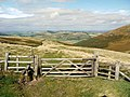Gate on St Cuthbert's Way - geograph.org.uk - 1508786.jpg