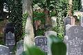 Gelnhausen Jüdischer Friedhof 26.JPG