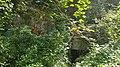Geulhem-Vlaberggroeve (4).jpg