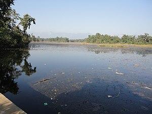 Ghodaghodi Tal - Image: Ghodaghodi Lake