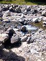 Gimello - creek - 02.jpg