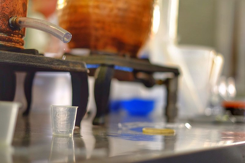 File:Gin Distillation Training at Distillique 09.jpg