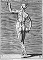 Giulio Bonasone's figures illustrating human anatomy Wellcome L0018652.jpg