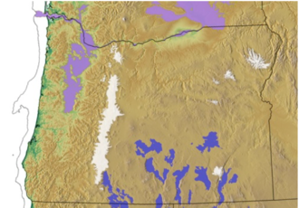 Fort Rock-Christmas Lake Valley Basin - Oregon Pleistocene geography. Blue areas are pluvial lakes, purple areas are Missoula Flood deposits, and white areas indicate maximum ice extent during the Glacial Maximum.