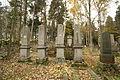 Gravestones at Jewish Cemetery in Dřevíkov, Chrudim District 03.JPG
