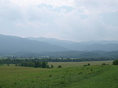 Great Smoky Mountains Cades Cove View.jpg