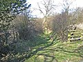 Green lane at Satley - geograph.org.uk - 358699.jpg
