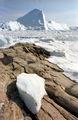 Greenland Ilulissat-40.jpg