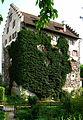 Greifensee ZH - Schloss IMG 2462.JPG