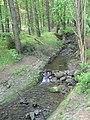 Greystone Beck in Lindley Wood - geograph.org.uk - 176466.jpg