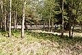 Großenaspe Wald nahe Halloher Moor 1.jpg