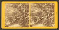 Group at cave, from Robert N. Dennis collection of stereoscopic views.png