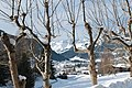 Gstaad - panoramio (59).jpg