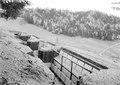 Guidenweid, Blick in einen offenen Schützengraben - CH-BAR - 3238528.tif