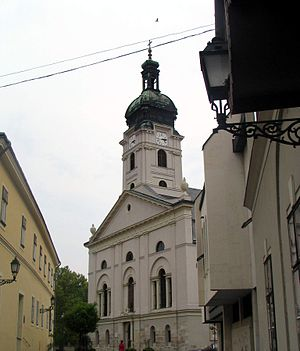 Roman Catholic Diocese of Győr - The Cathedral of St Mary