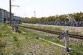 Hanwa Freight Line-2009-16.jpg