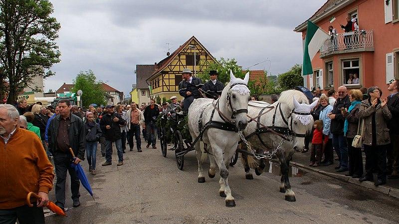 File:Hausen im Wiesental-Hebelfest-historischer Festumzug - panoramio.jpg