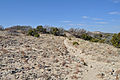 Haynes Ridge Overlook Trail.JPG